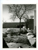 Julius Shulman-Vintage, The Kaufman House, Palm Springs, Neutra