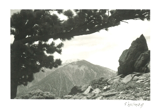 "Julius Shulman - Vintage Pocket Camera, ""The Mountain"" 1935"